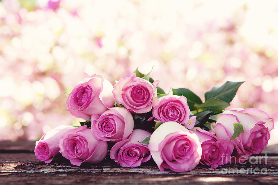 Pink Photograph - Pink Roses by Kim Fearheiley