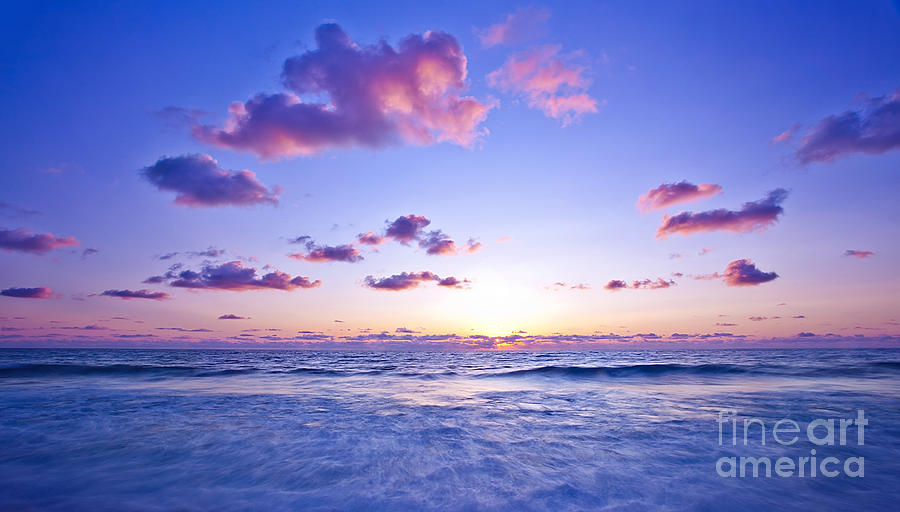 Pink Sunset On The Beach Photograph By Anna Om