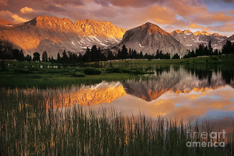 John Muir Wilderness Photograph - Pioneer Basin by Buck Forester