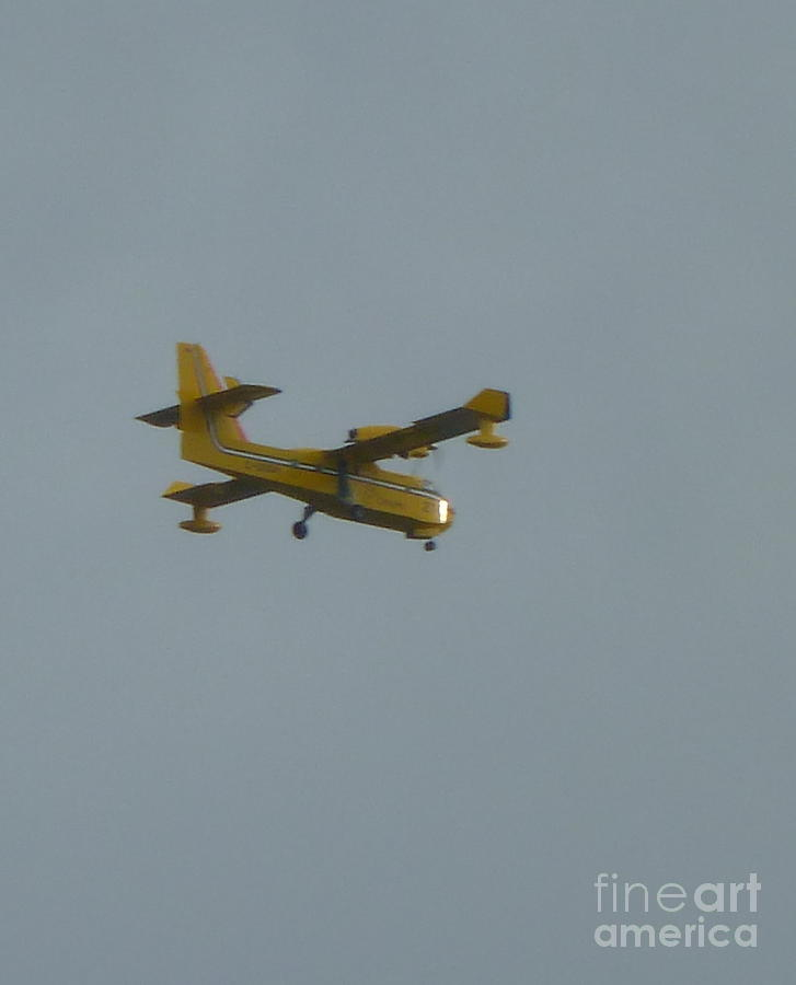 Plane Photograph - Plane In Sky by Art Studio