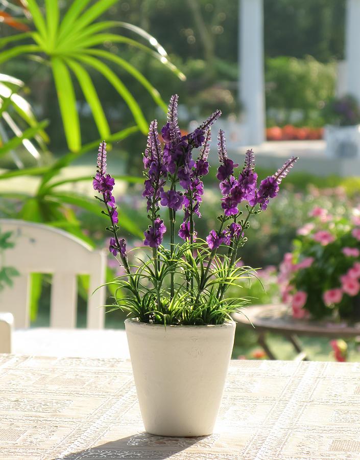 Botanic Photograph - Plastic Lavender Flowers  by Nawarat Namphon