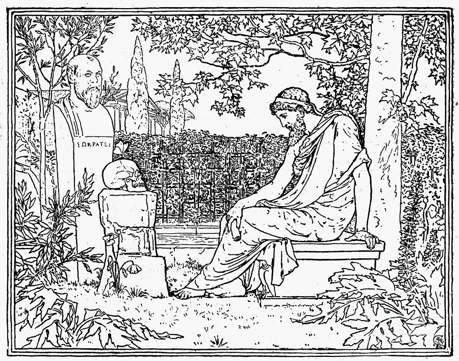 Academic Photograph - Plato (c427-c347 B.c.) by Granger