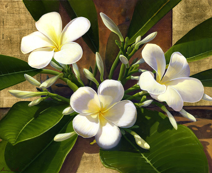 Plumeria Mixed Media - Plumeria by Anne Wertheim