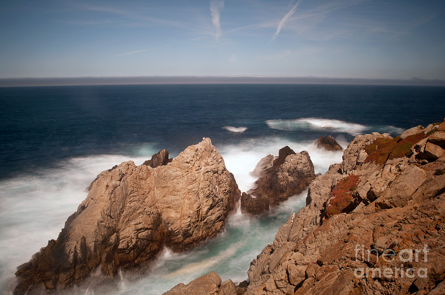 Point Lobos Photograph - Point Lobos Number One by Catherine Lau
