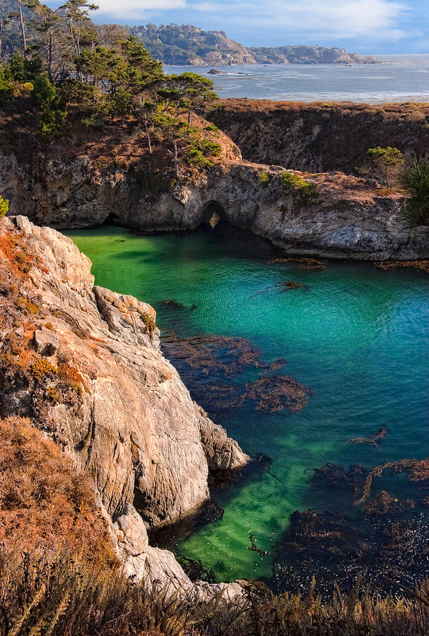 Point Lobos State Reserve Photograph - Point Lobos State Reserve California by Utah Images