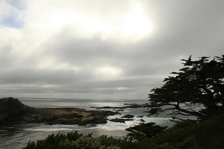 California Photograph - Point Lobos View by Suzanne Lorenz