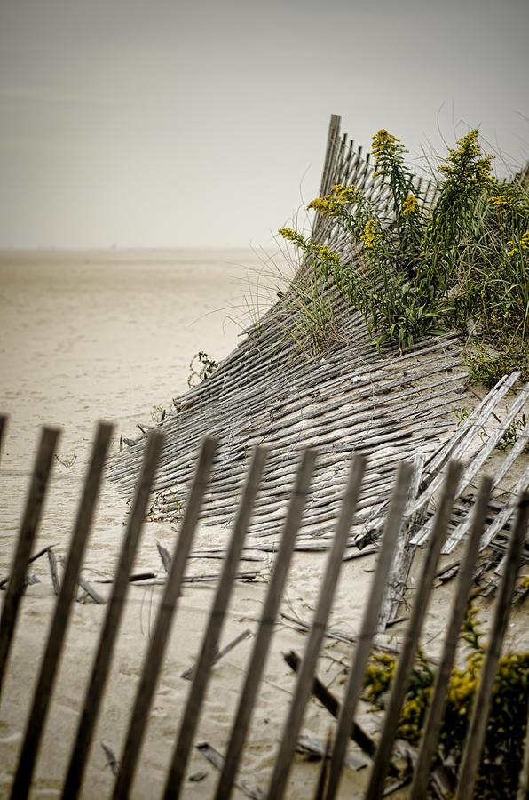 Beach Photograph - Point Pleasant Beach by Heather Applegate