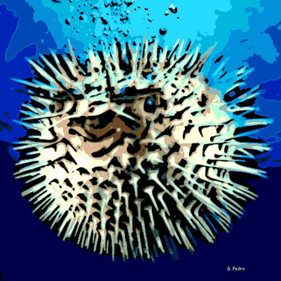 Puffer Fish Photograph - Pointed Opinion by George Pedro