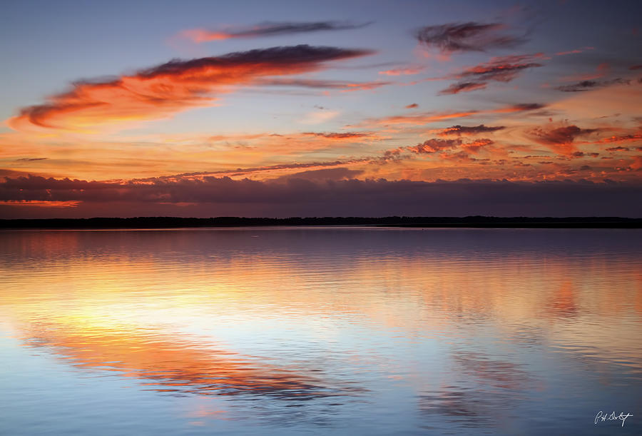 Beaufort County Photograph - Pointing South by Phill Doherty