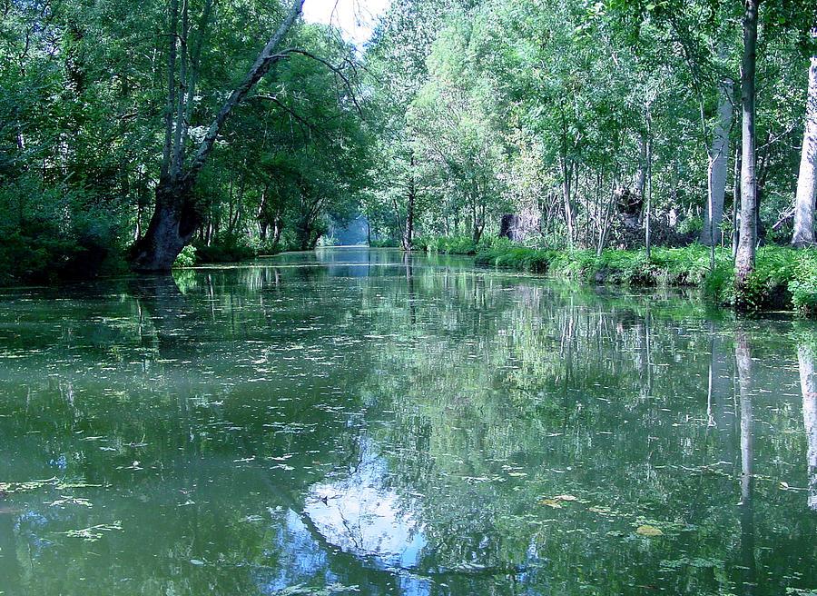 Poitevin Marsh (photo) Marais Poitevin; French Landscape; River; Fens; La Venise Verte; Green Venice; Marsh; Coutryside; Rural; Western; France Photograph - Poitevin Marsh by Poitevin Marsh