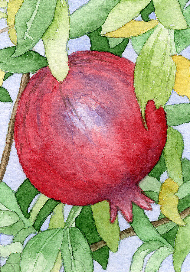 Botanical Painting - Pomegranate In Tree by Eunice Olson