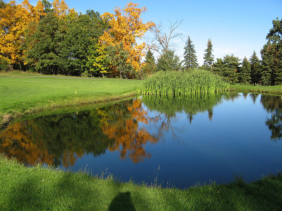 Water Reflections Photograph - Pond Reflections by Leontine Vandermeer
