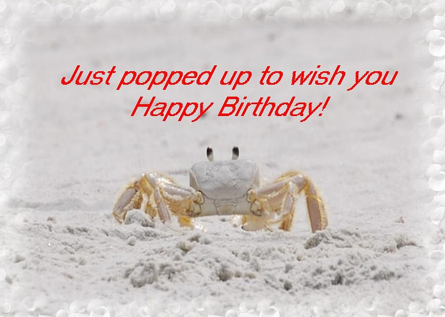 Birthday Photograph - Popped In To Wish You Happy Birthday by Judy Hall-Folde