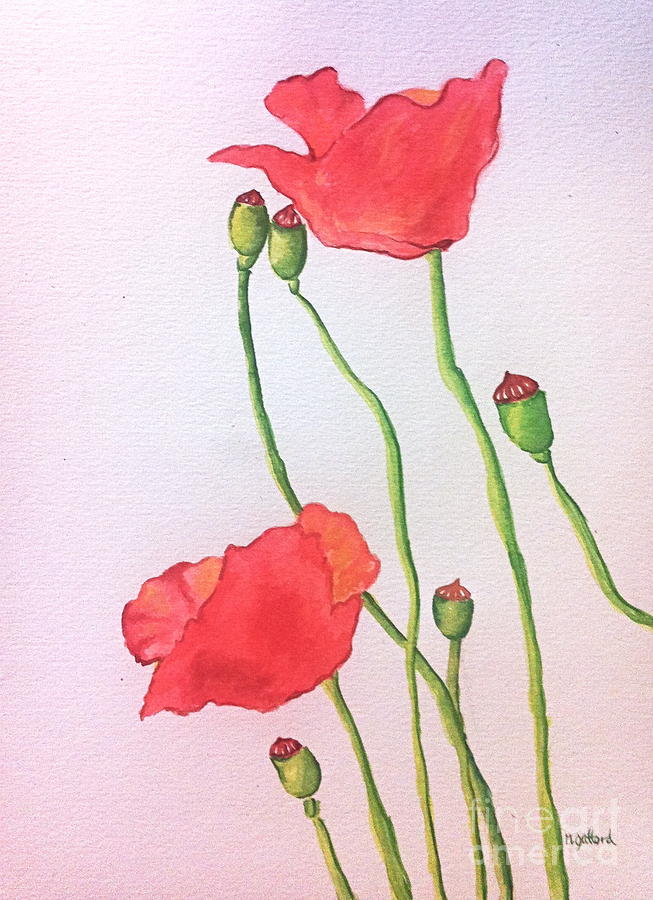 Watercolor Painting - Poppies by Norma Gafford