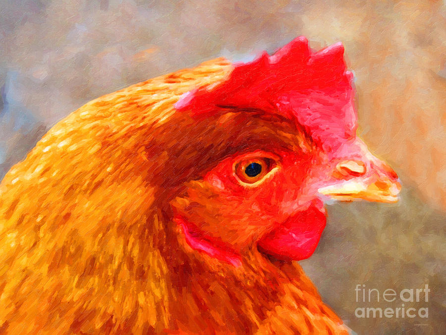 Animal Photograph - Portrait Of A Chicken by Wingsdomain Art and Photography