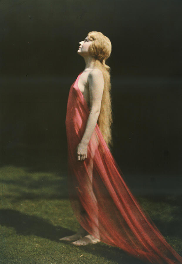 Day Photograph - Portrait Of A Nude Woman Draped by Franklin Price Knott