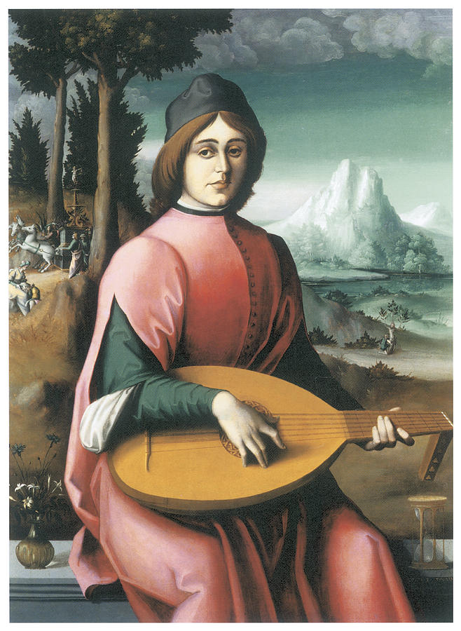 Portrait Painting - Portrait Of A Young Man With A Lute by Bachiacca