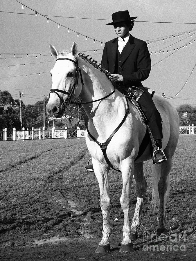 Horse Photograph - Portuguese Horse Rider by Gaspar Avila
