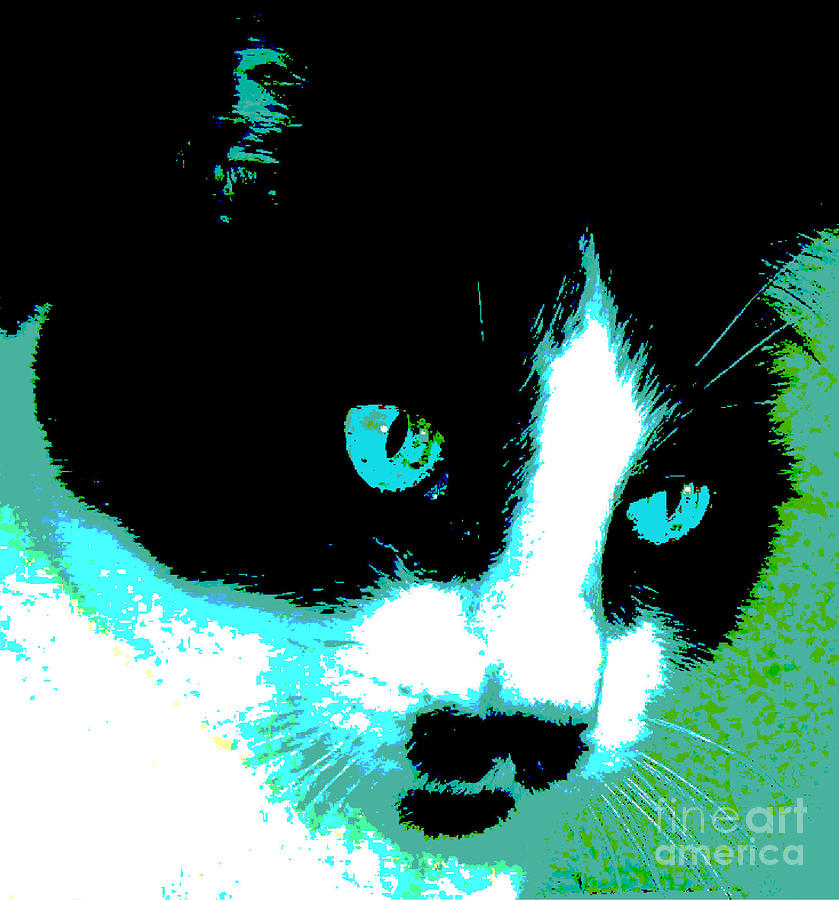 Black And White Kitty Painting - Poster Kitty by Elinor Mavor