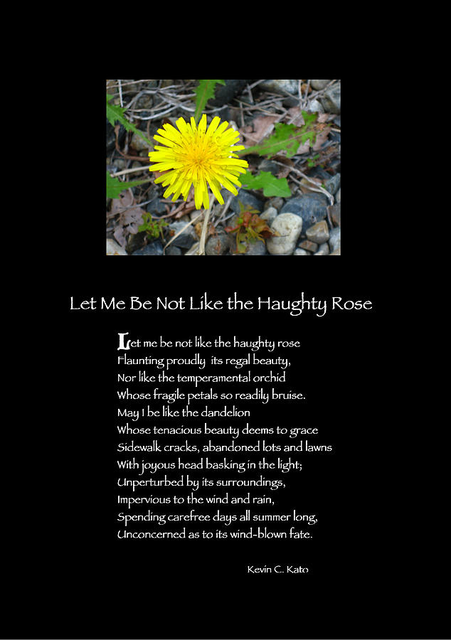 Rose Photograph - Poster Poem - Let Me Be Not Like The Haughty Rose by Poetic Expressions