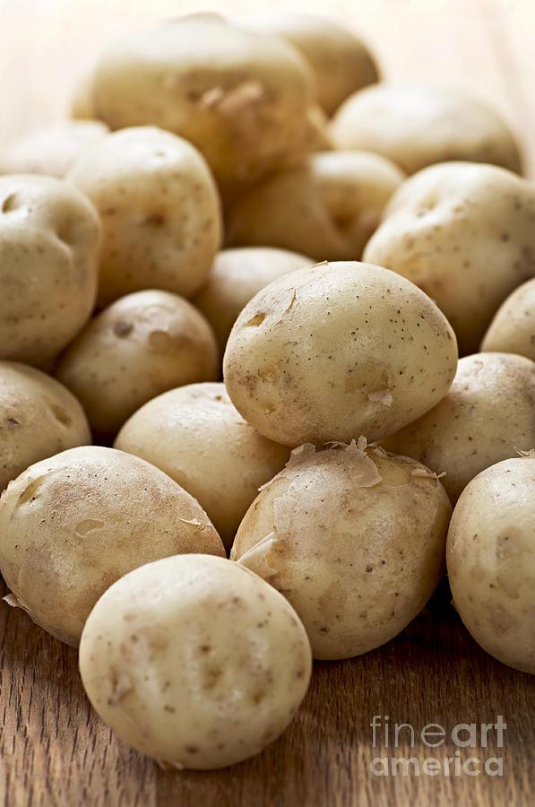 Potatoes Photograph - Potatoes by Elena Elisseeva