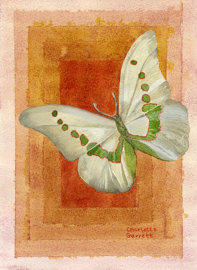 Power Butterfly by Charlotte Garrett