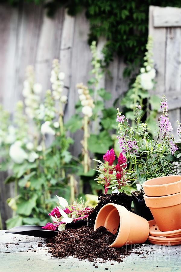 Gardening Photograph - Preparing Flower Pots by Stephanie Frey