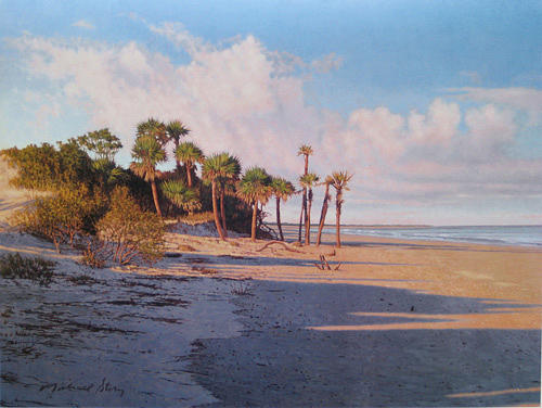 Marsh Scenes Painting - Print Island Shadows by Michael Story