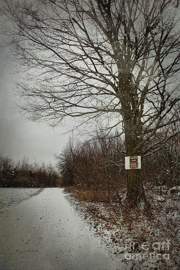 Atmosphere Photograph - Private Property Sign On Tree In Winter by Sandra Cunningham