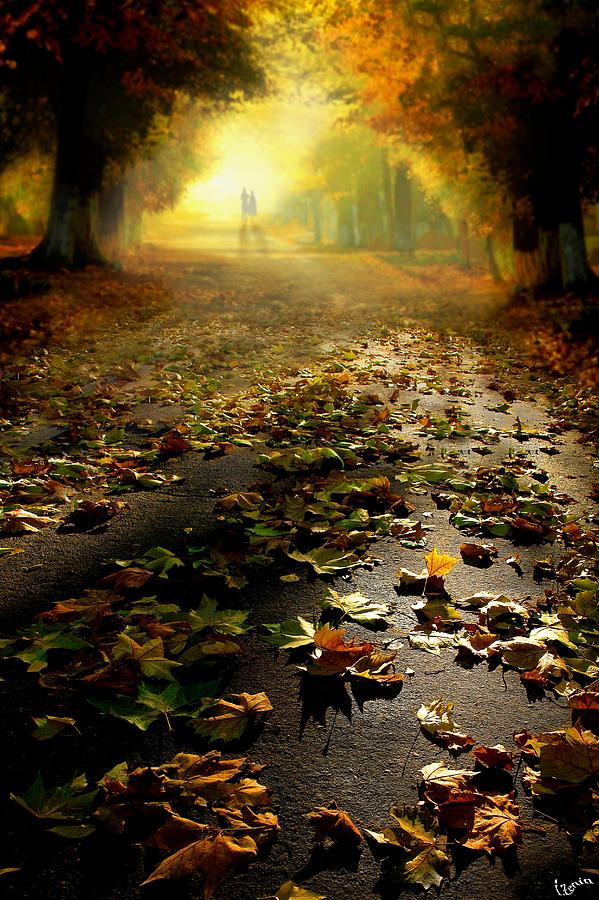 Promenade Digital Art - Promenade by Igor Zenin