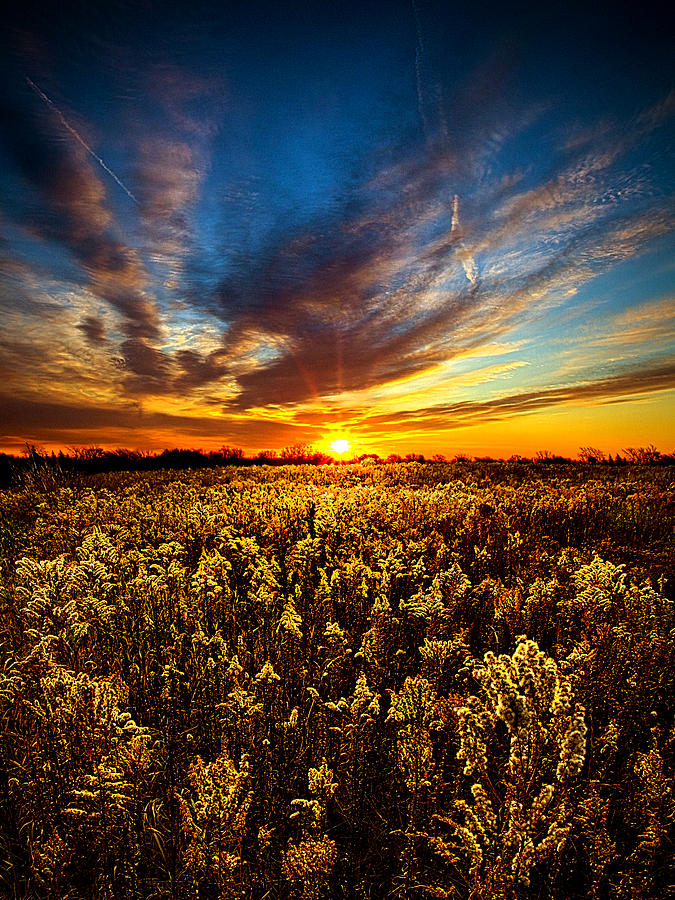 Horizons Photograph - Proposal by Phil Koch