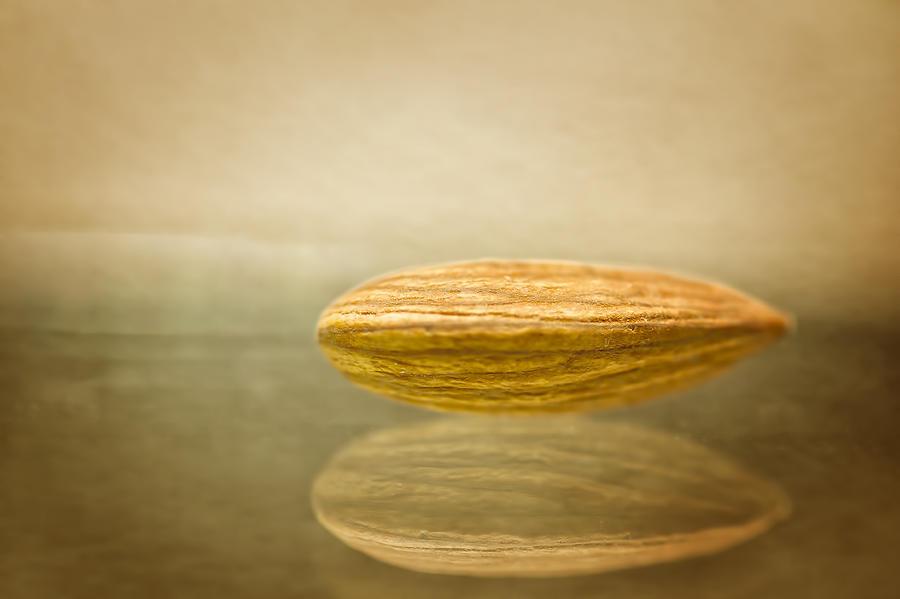 Nut Photograph - Prunus Dulcis by Dmitriy Mirochnik