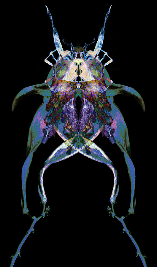 Psychedelic Photograph - Psycho Frog Bug by David Kleinsasser