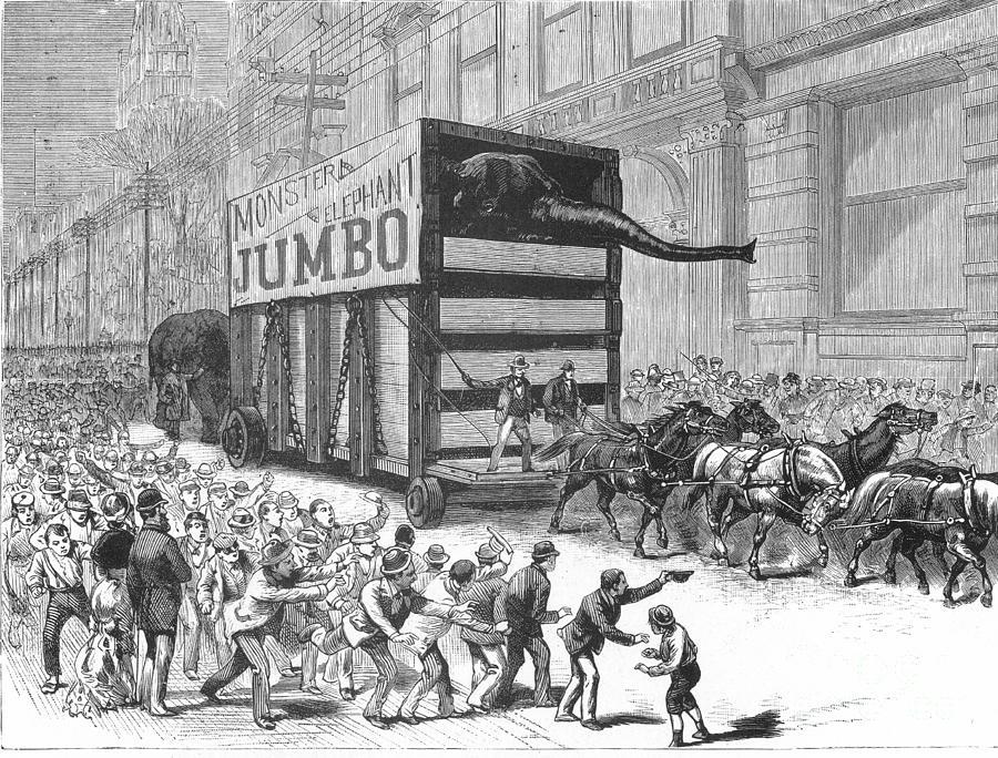1882 Photograph - P.t. Barnum/jumbo by Granger