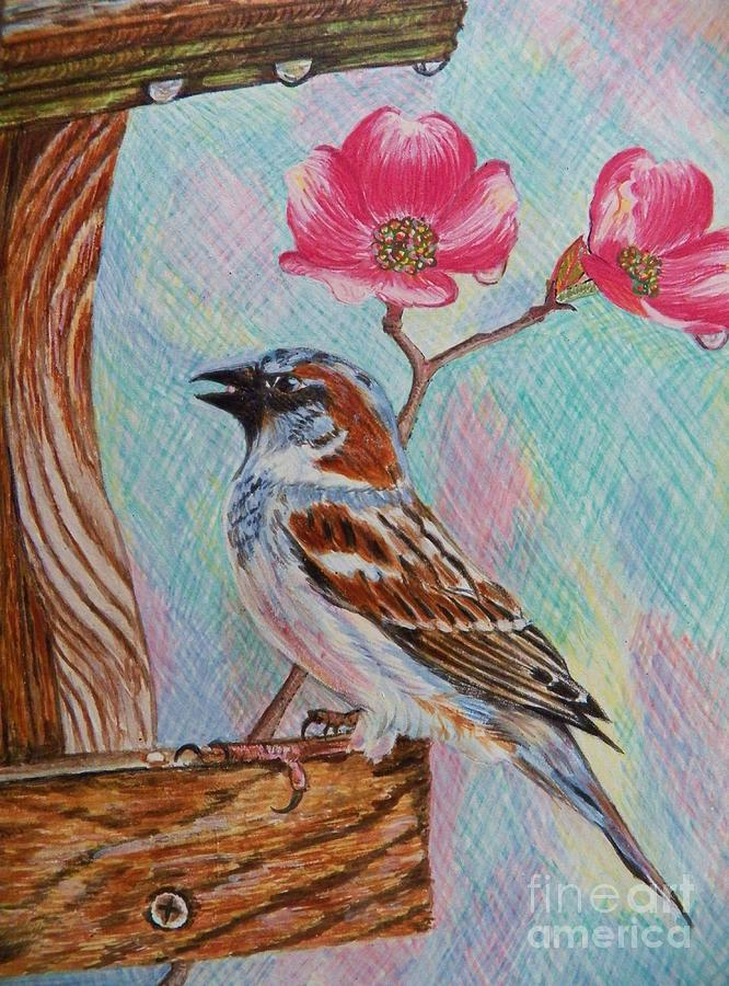 Sparrow Painting - Ptg   Sparrow With Pink Dogwood In The Rain by Judy Via-Wolff