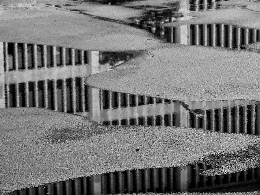 Puddle Photograph - Puddle by Tom Bush IV