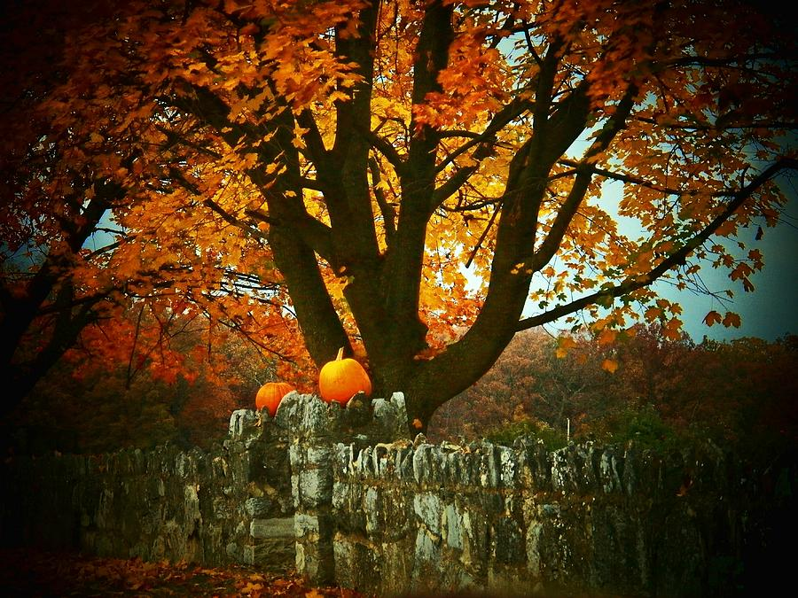 Autumn Photograph - Pumpkins On The Wall by Joyce Kimble Smith