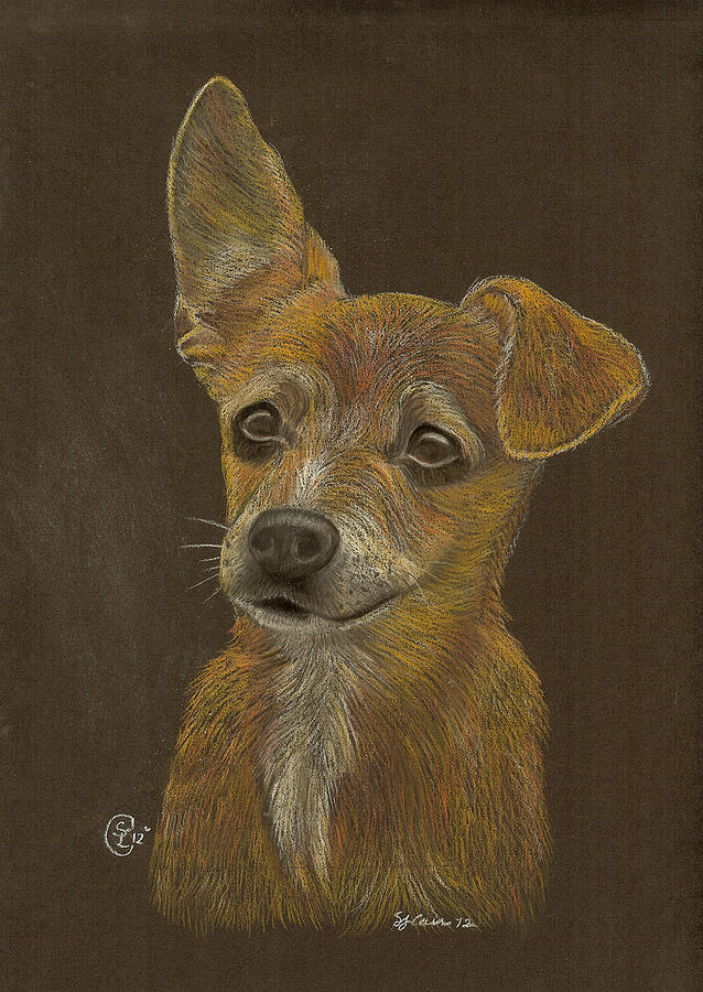 Dog Pastel - Pup by Stephanie L Carr