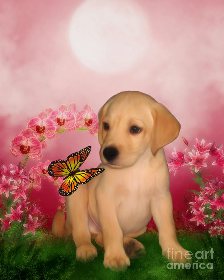Puppies Digital Art - Puppy Innocence by Smilin Eyes  Treasures