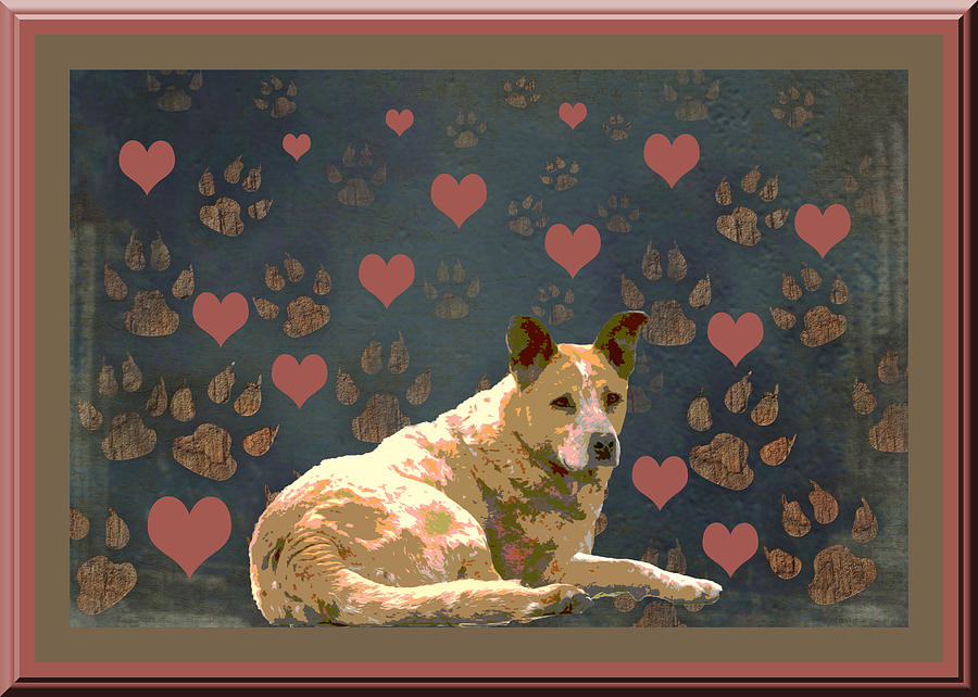 Red Heeler Photograph - Puppy Love by One Rude Dawg Orcutt