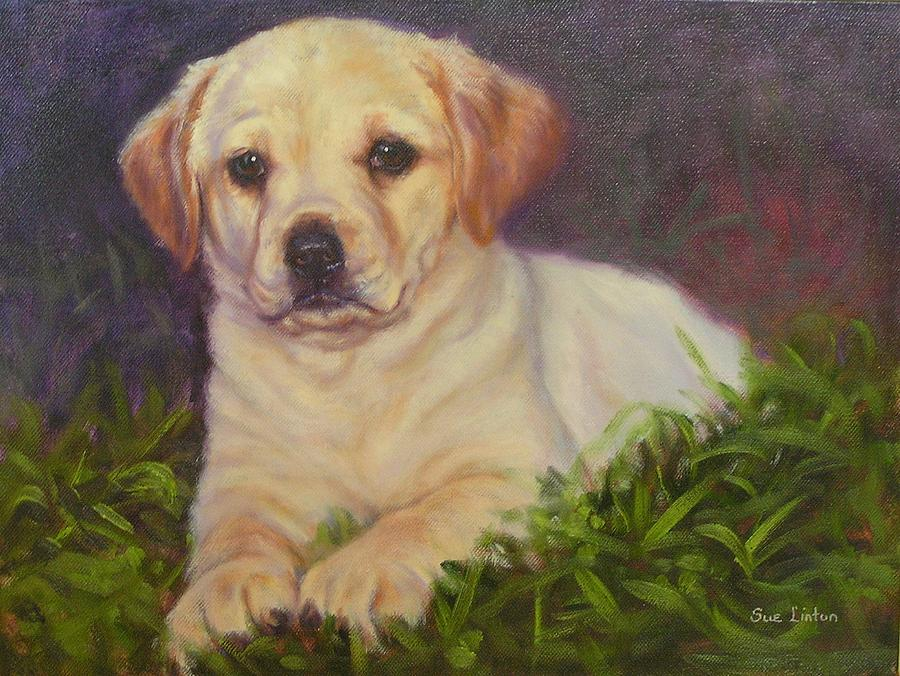 Puppy In Grass Painting - Puppy Love by Sue Linton