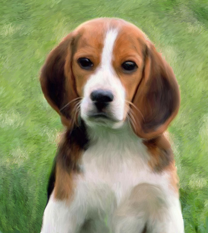 Puppy Painting - Puppy Portrait by Snake Jagger