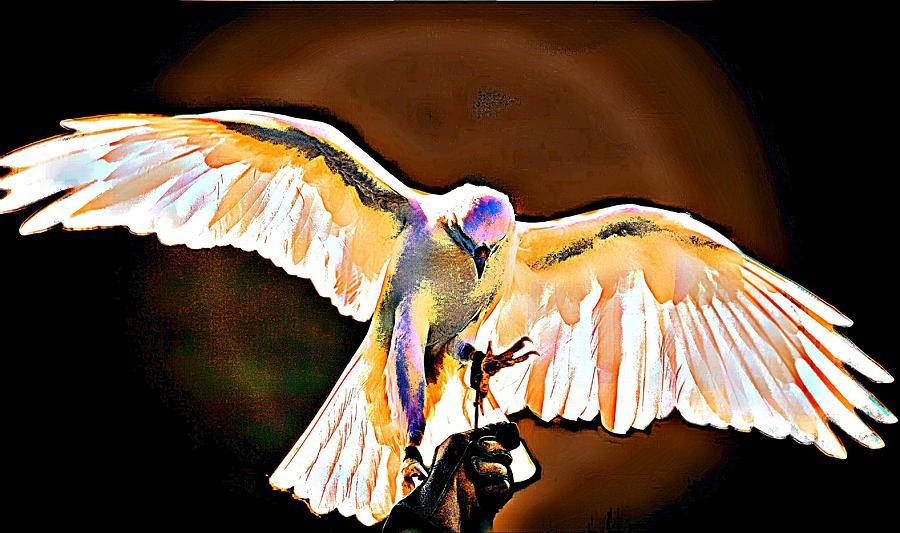 Birds Of Prey Digital Art - Pure Whtie Raptor by Carrie OBrien Sibley