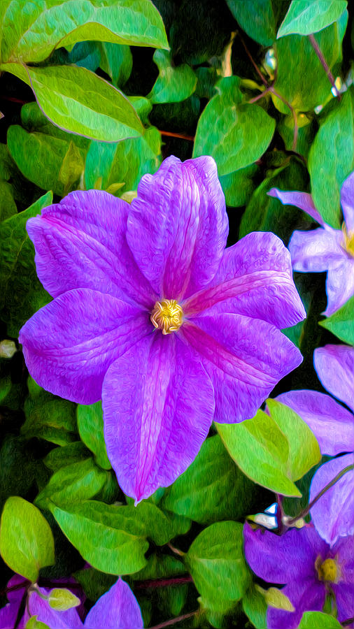 Magenta Digital Art - Purple And Green by Sergio Aguayo
