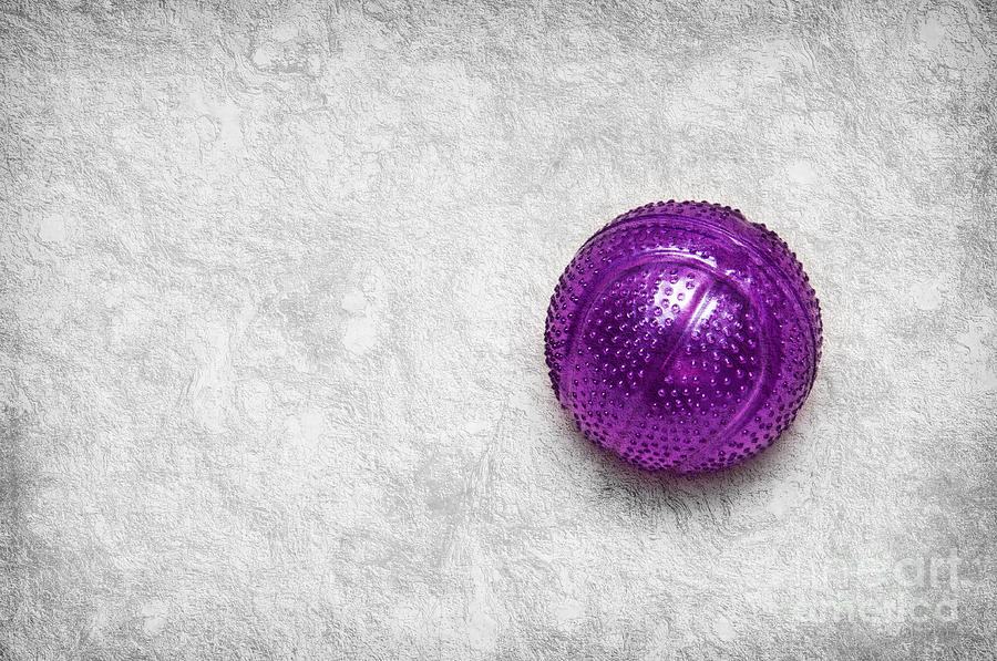 Purple Ball Cat Toy Photograph - Purple Ball Cat Toy by Andee Design