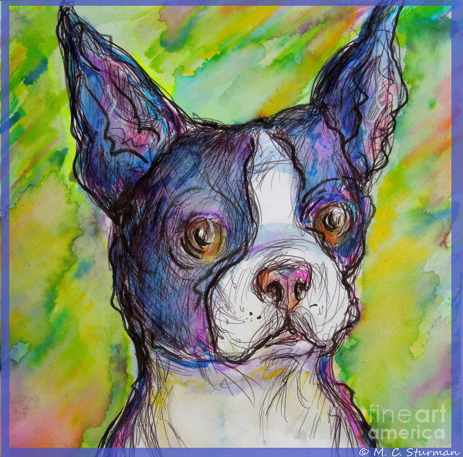 Bulldog Painting - Purple Boston Terrier by M c Sturman
