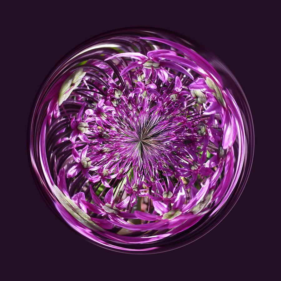 Flower Digital Art - Purple Chaos by Robert Gipson