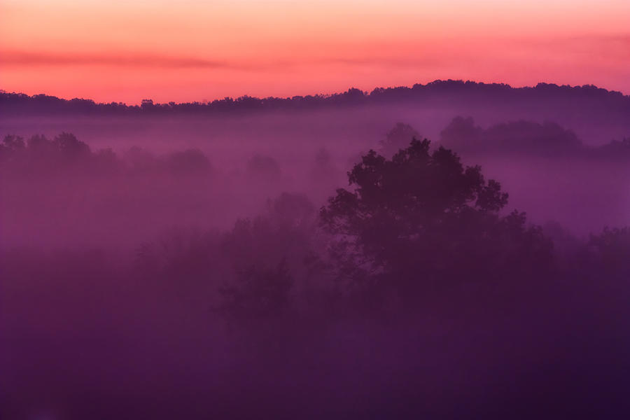 Purple Photograph - Purple Dawn by Matt  Trimble