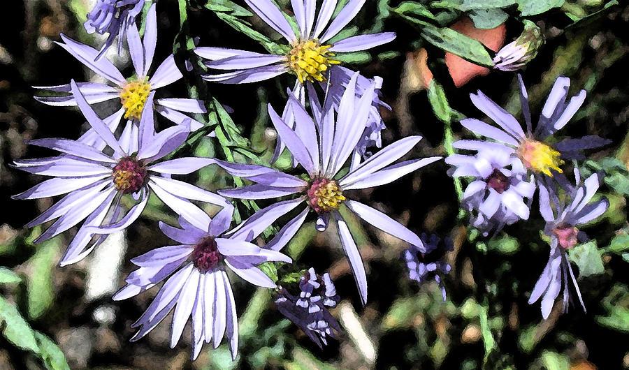 Abstract Digital Art - Purple Flowers by Bill Kennedy