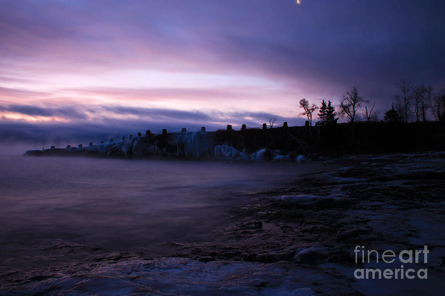 North Shore Photograph - Purple Gooseberry by Jamie Rabold